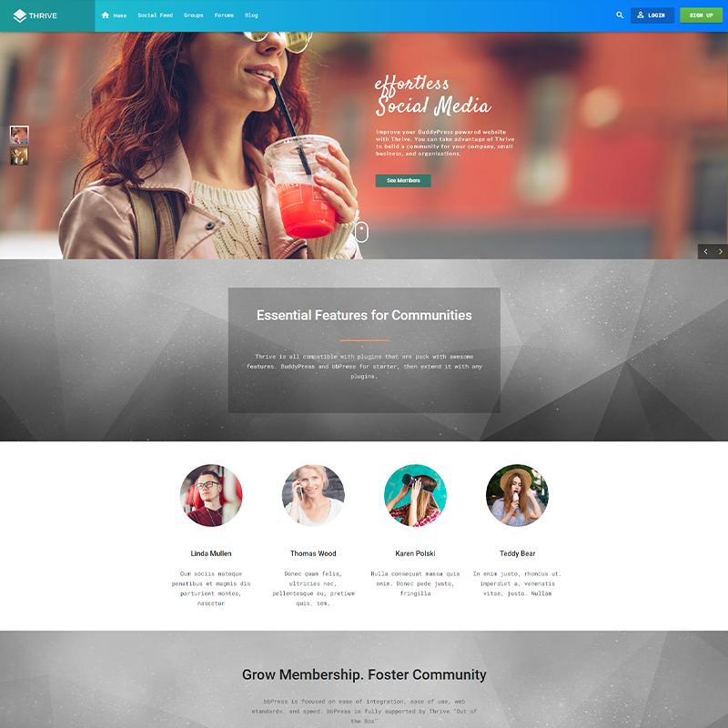 WordPress Plantilla Thrive BuddyPress