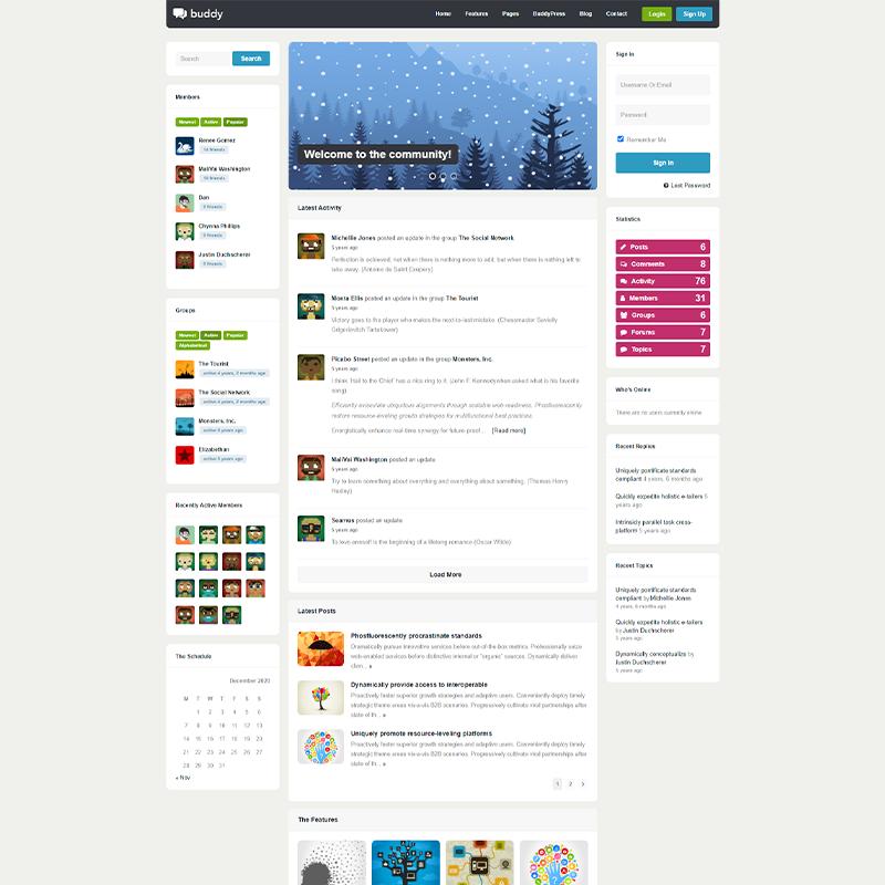 WordPress Theme Buddy BuddyPress